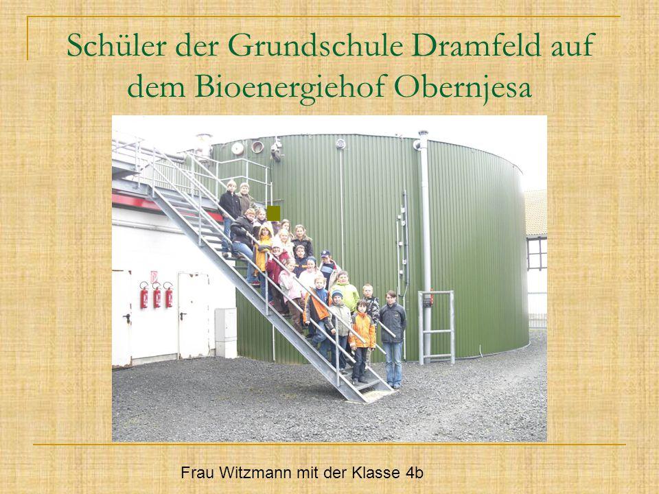 Schüler der Grundschule Dramfeld auf dem Bioenergiehof Obernjesa