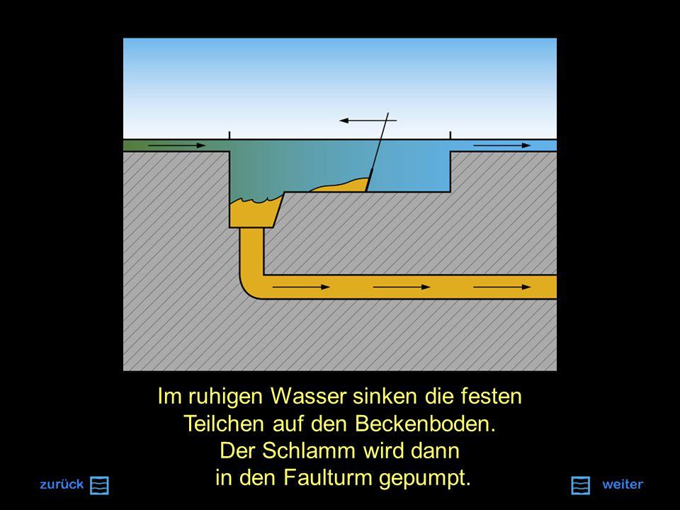 Im ruhigen Wasser sinken die festen Teilchen auf den Beckenboden