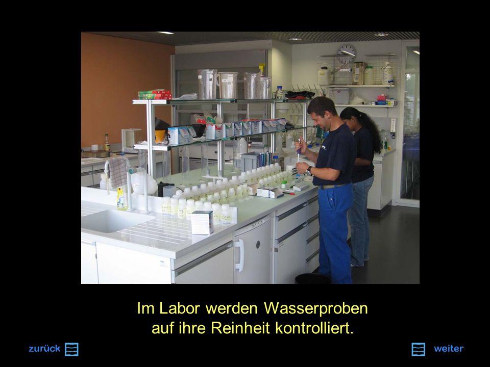 Im Labor werden Wasserproben auf ihre Reinheit kontrolliert.