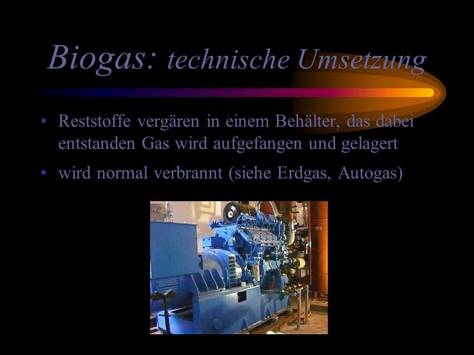 Biogas: technische Umsetzung