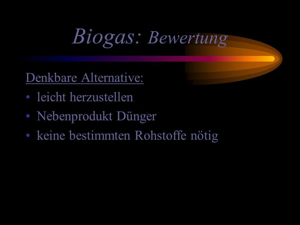 Biogas: Bewertung Denkbare Alternative: leicht herzustellen