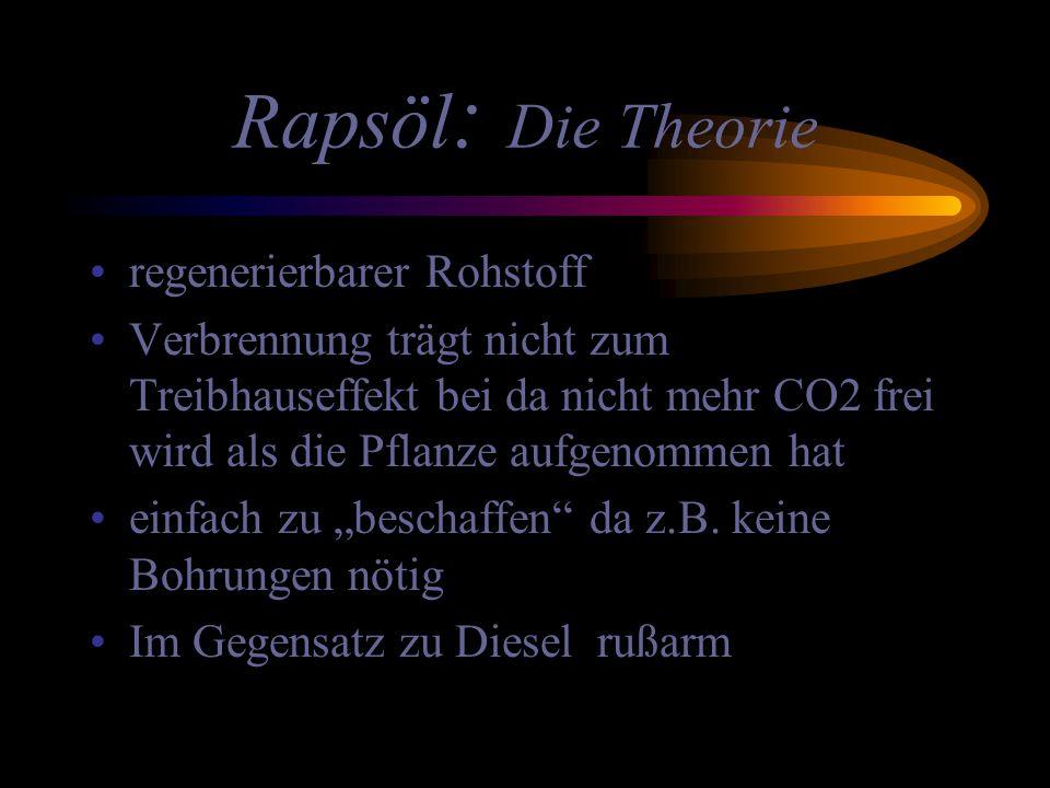 Rapsöl: Die Theorie regenerierbarer Rohstoff