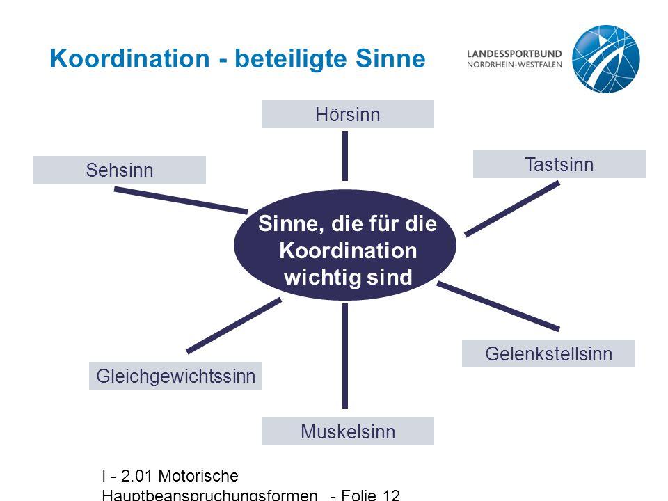 Koordination - beteiligte Sinne