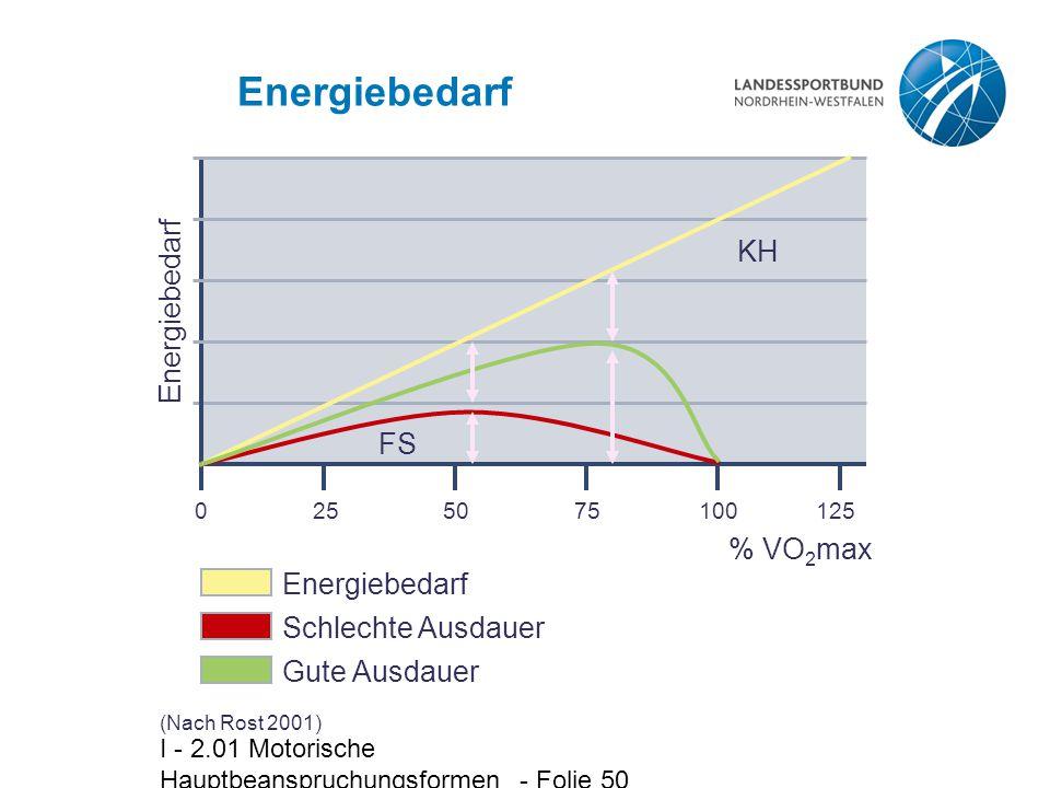Energiebedarf KH Energiebedarf FS % VO2max Energiebedarf