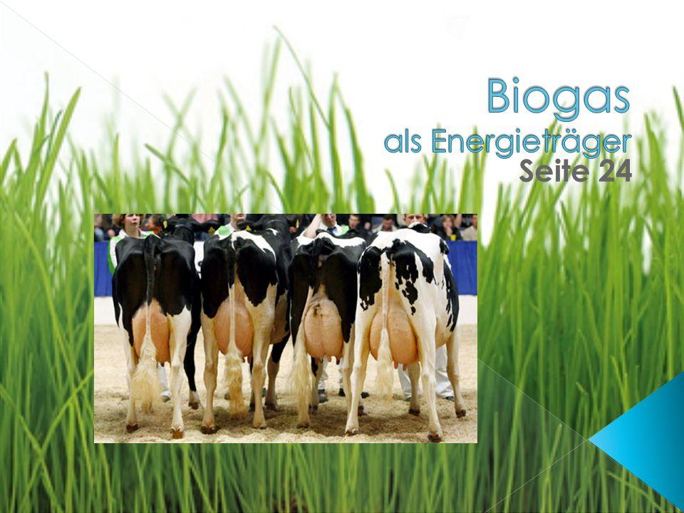 Biogas als Energieträger