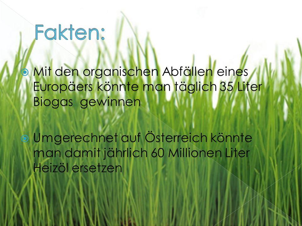 Fakten: Mit den organischen Abfällen eines Europäers könnte man täglich 35 Liter Biogas gewinnen.
