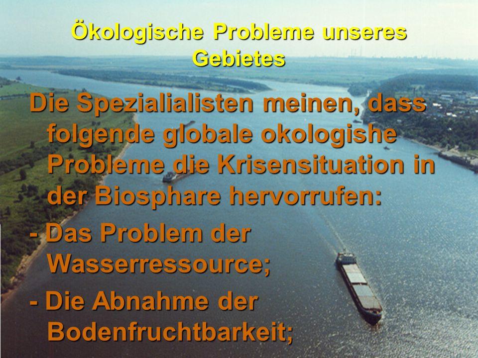 Ökologische Probleme unseres Gebietes