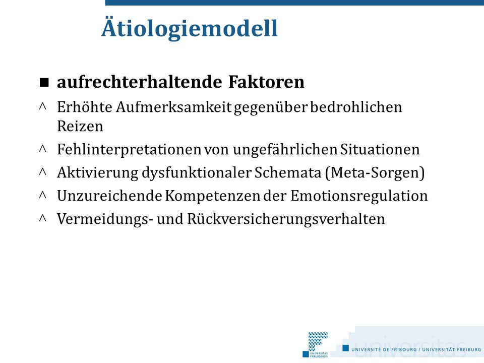 Ätiologiemodell aufrechterhaltende Faktoren cc