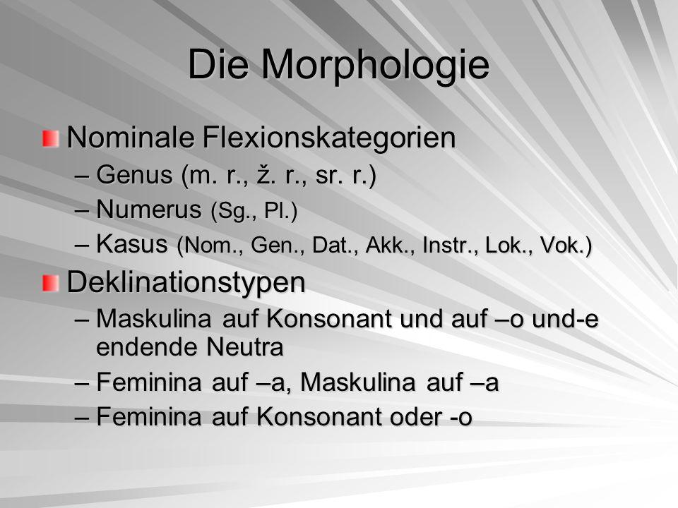 Die Morphologie Nominale Flexionskategorien Deklinationstypen