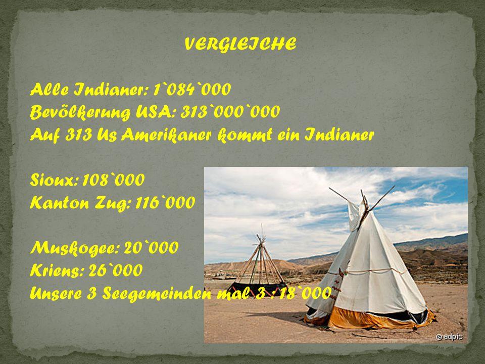 VERGLEICHE Alle Indianer: 1`084`000. Bevölkerung USA: 313`000`000. Auf 313 Us Amerikaner kommt ein Indianer.