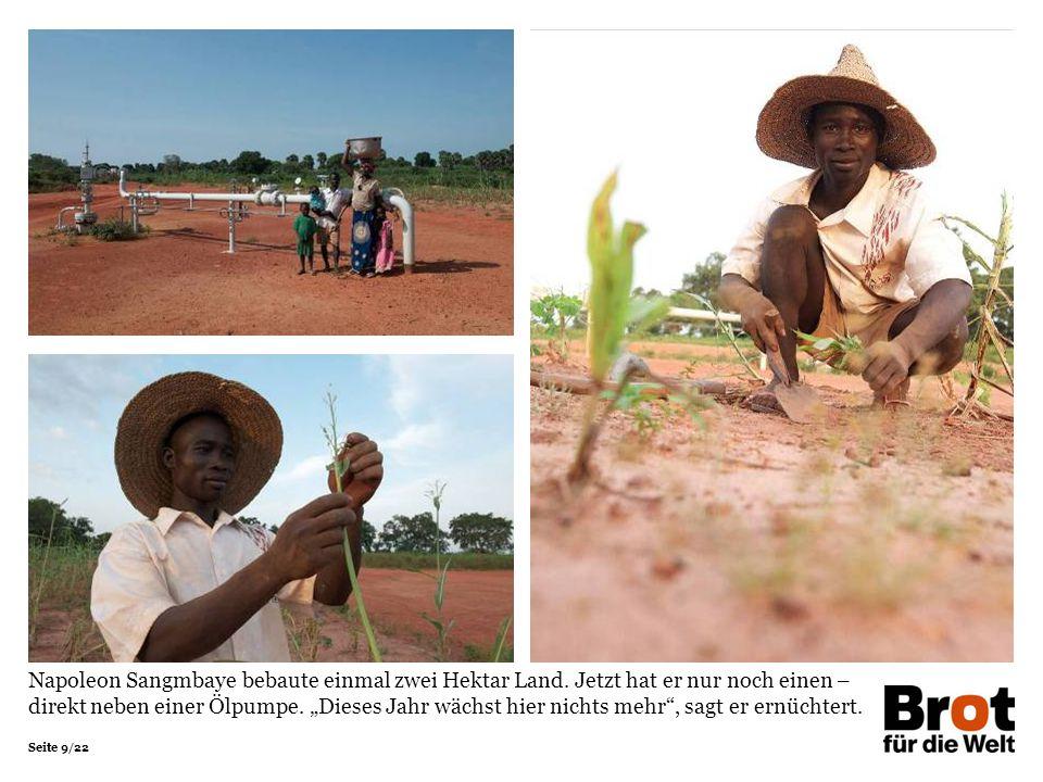 Napoleon Sangmbaye bebaute einmal zwei Hektar Land