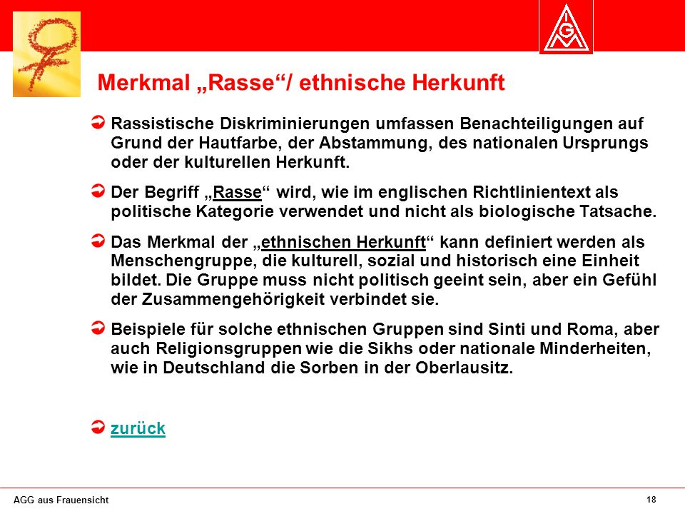"""Merkmal """"Rasse / ethnische Herkunft"""