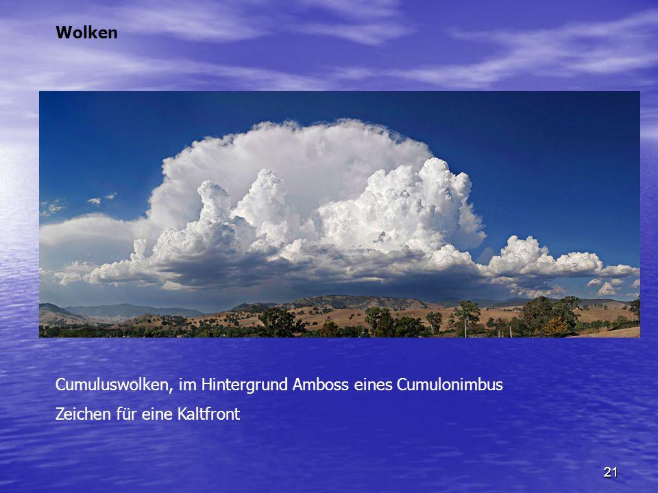Wolken Cumuluswolken, im Hintergrund Amboss eines Cumulonimbus Zeichen für eine Kaltfront