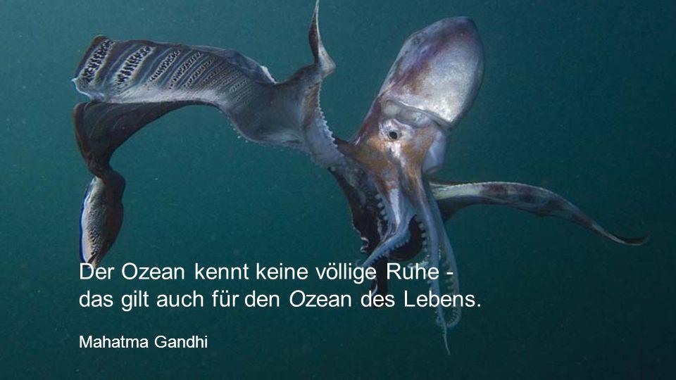 Der Ozean kennt keine völlige Ruhe - das gilt auch für den Ozean des Lebens. Mahatma Gandhi