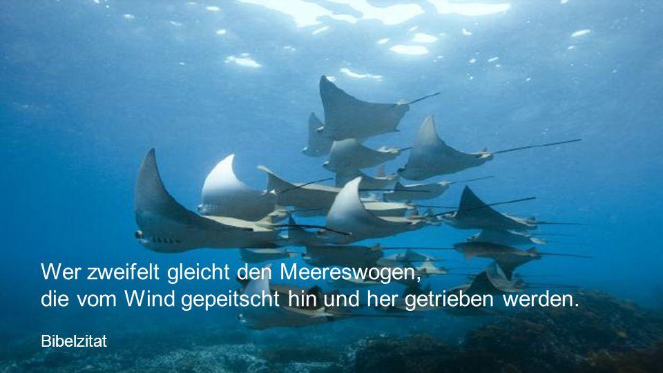 Wer zweifelt gleicht den Meereswogen,