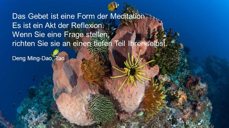 Das Gebet ist eine Form der Meditation. Es ist ein Akt der Reflexion.