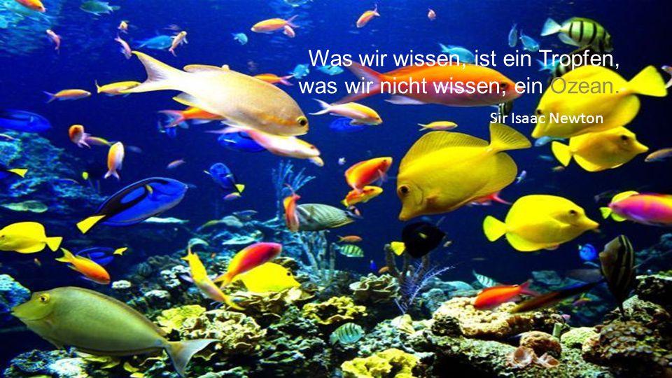 Was wir wissen, ist ein Tropfen, was wir nicht wissen, ein Ozean.