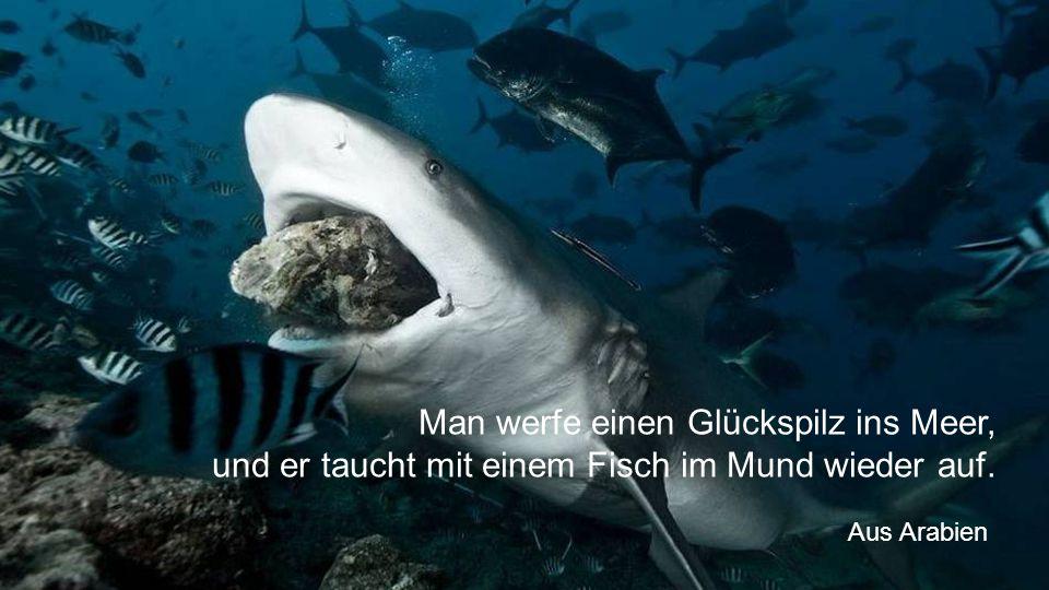 Man werfe einen Glückspilz ins Meer, und er taucht mit einem Fisch im Mund wieder auf.