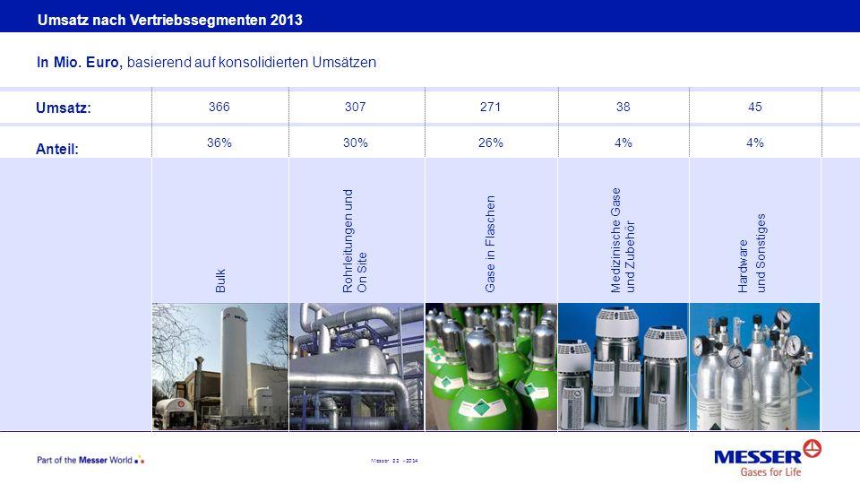 Umsatz nach Vertriebssegmenten 2013