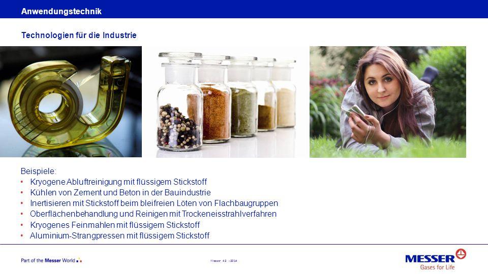 Anwendungstechnik Technologien für die Industrie. Beispiele: Kryogene Abluftreinigung mit flüssigem Stickstoff.