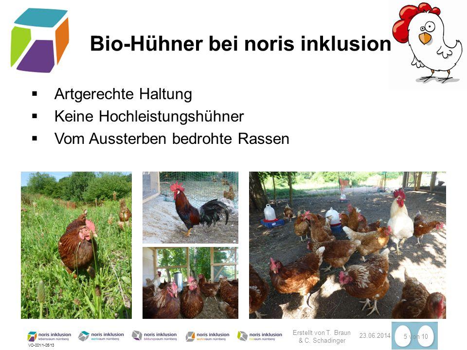 Bio-Hühner bei noris inklusion