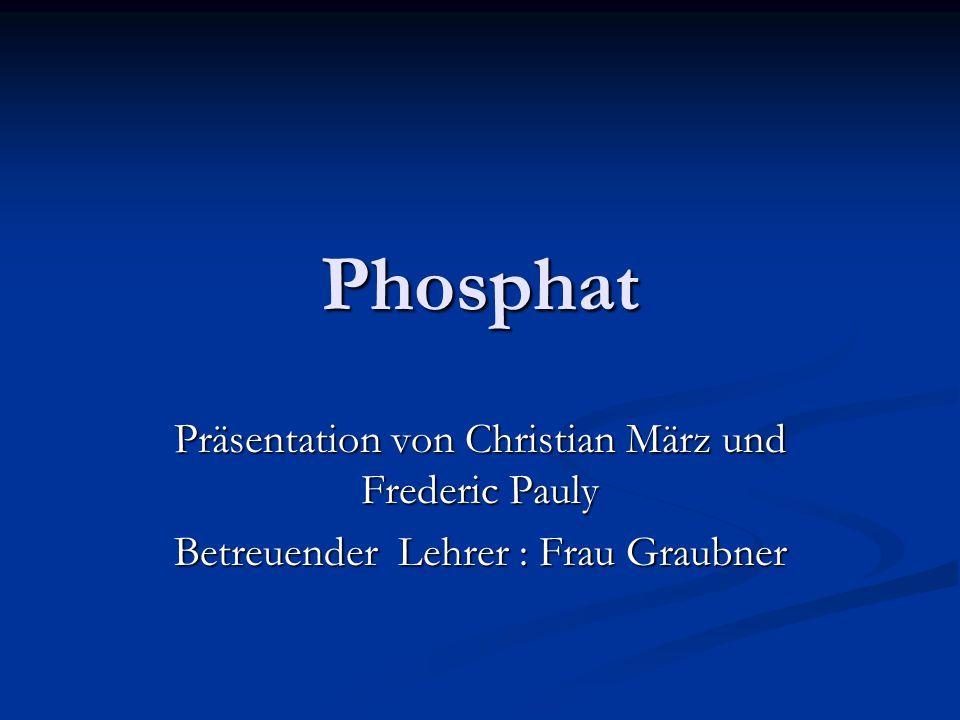 Phosphat Präsentation von Christian März und Frederic Pauly
