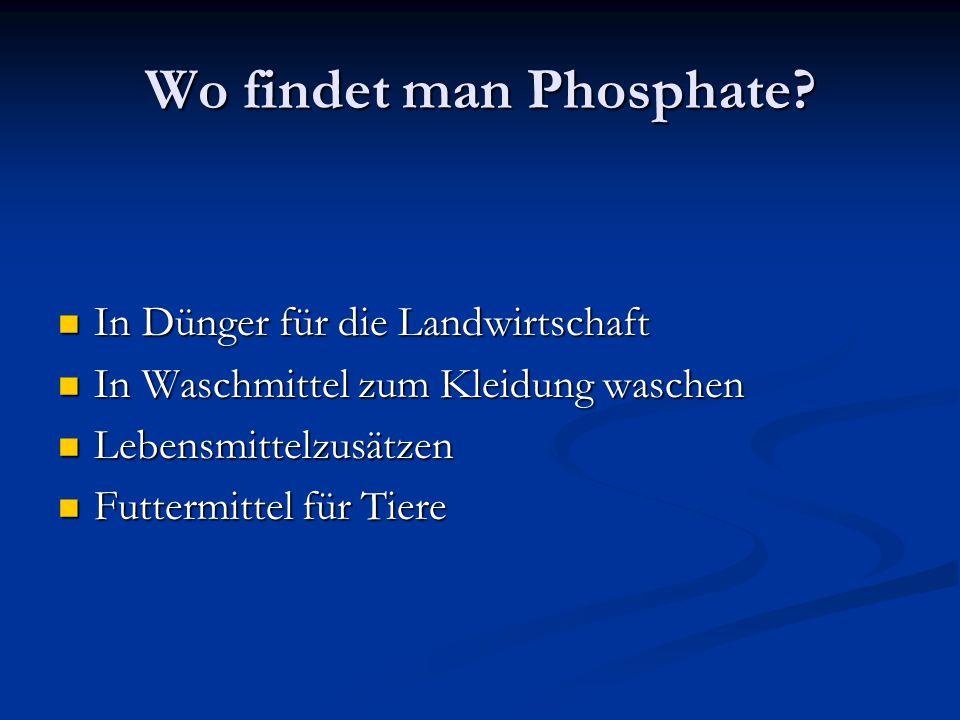 Wo findet man Phosphate