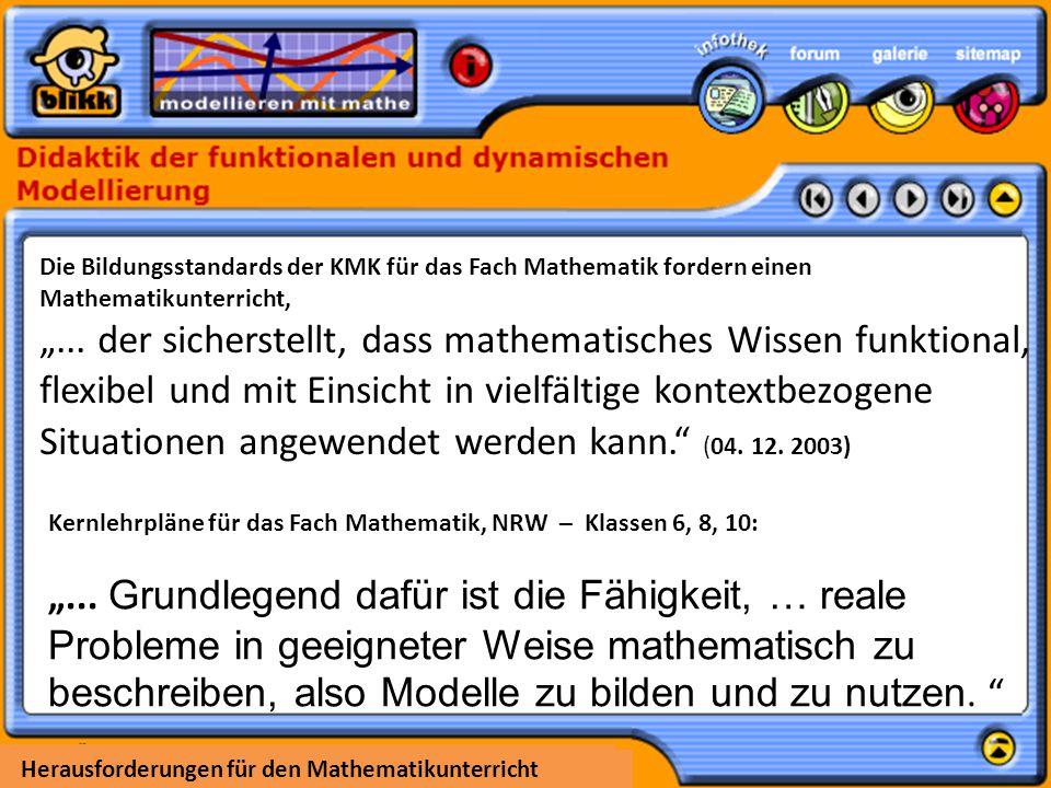 """""""... der sicherstellt, dass mathematisches Wissen funktional,"""