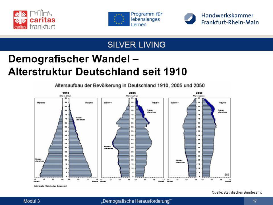Demografischer Wandel – Alterstruktur Deutschland seit 1910