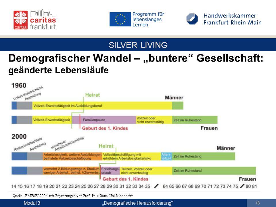 "Demografischer Wandel – ""buntere Gesellschaft: geänderte Lebensläufe"