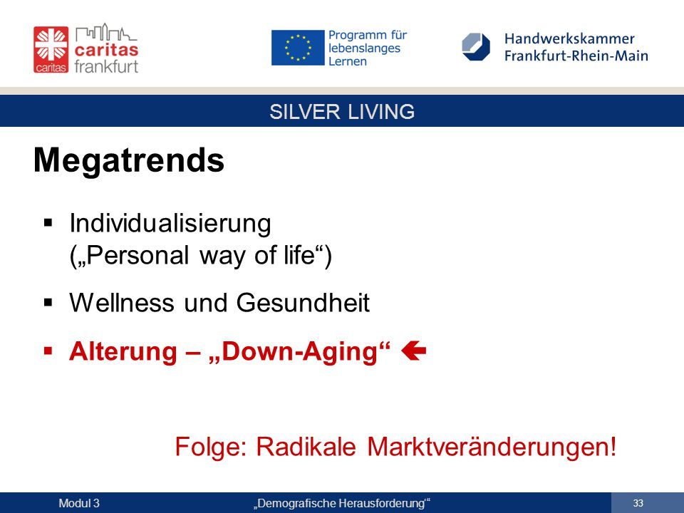 "Megatrends Individualisierung (""Personal way of life )"