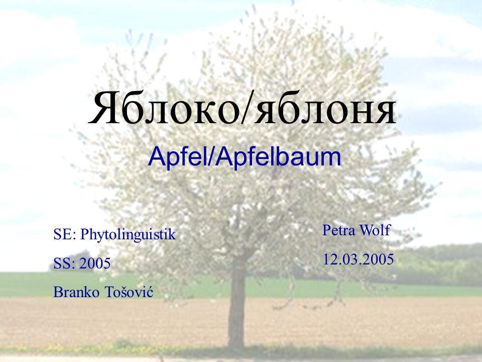 Яблоко/яблоня Apfel/Apfelbaum Petra Wolf SE: Phytolinguistik