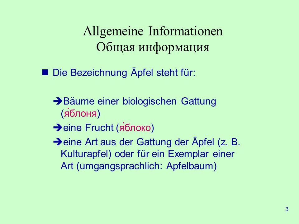 Allgemeine Informationen Общая информация