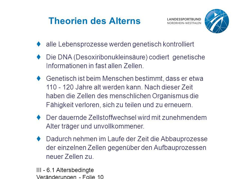 Theorien des Alterns alle Lebensprozesse werden genetisch kontrolliert