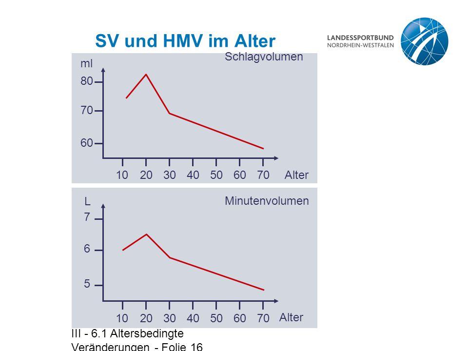 SV und HMV im Alter Schlagvolumen ml Alter 10 20 30 40 50 60 70 80 L