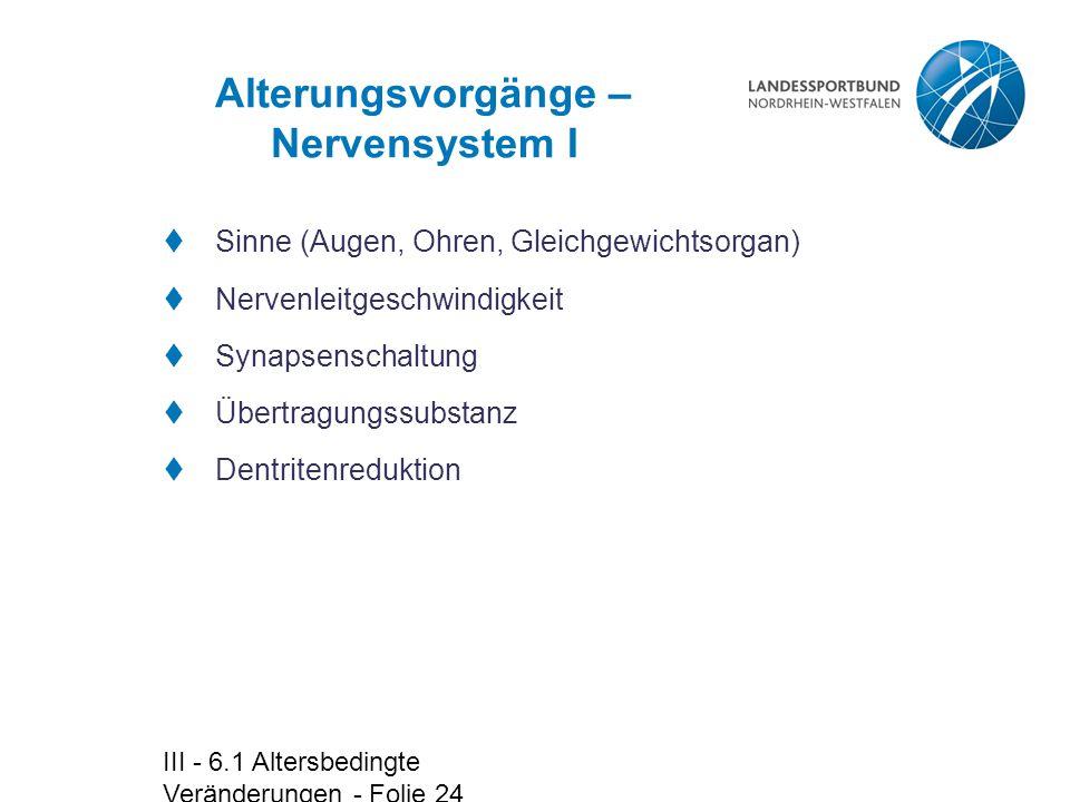 Alterungsvorgänge – Nervensystem I