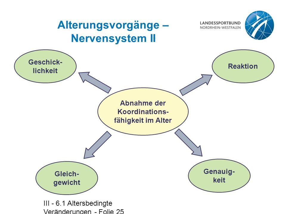 Alterungsvorgänge – Nervensystem II