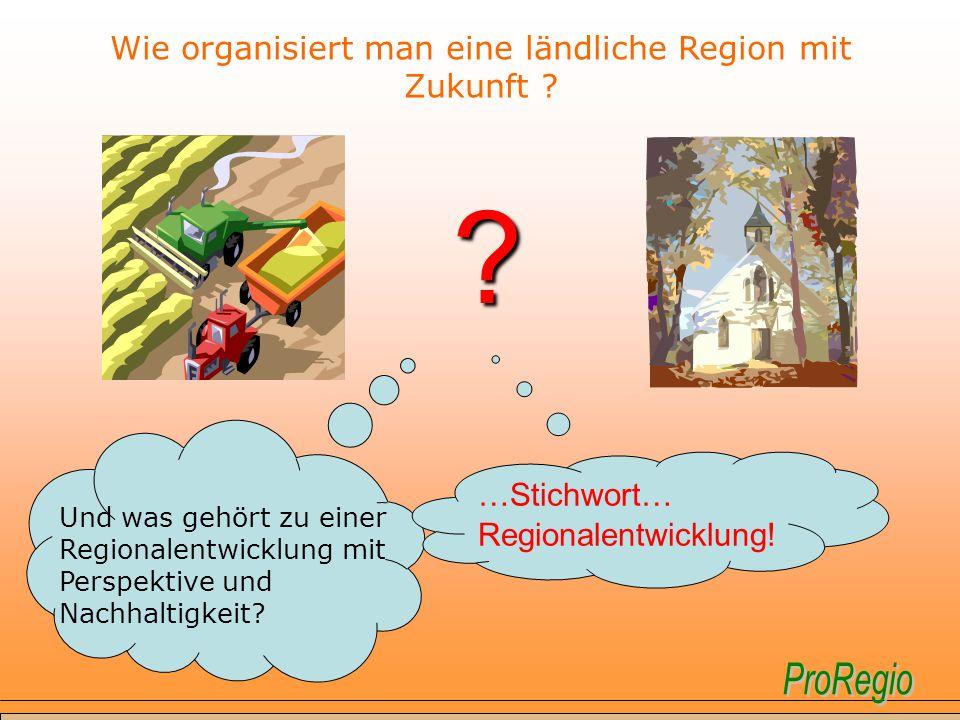 Wie organisiert man eine ländliche Region mit Zukunft