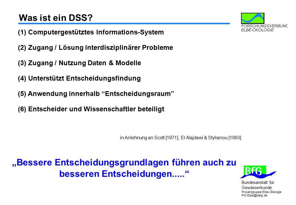 Was ist ein DSS (1) Computergestütztes Informations-System