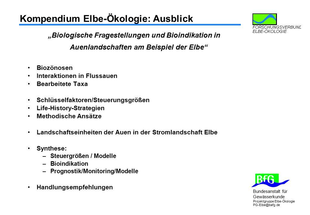 Kompendium Elbe-Ökologie: Ausblick
