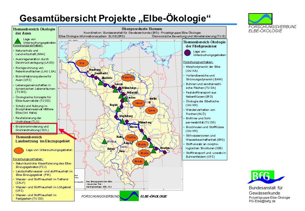 """Gesamtübersicht Projekte """"Elbe-Ökologie"""