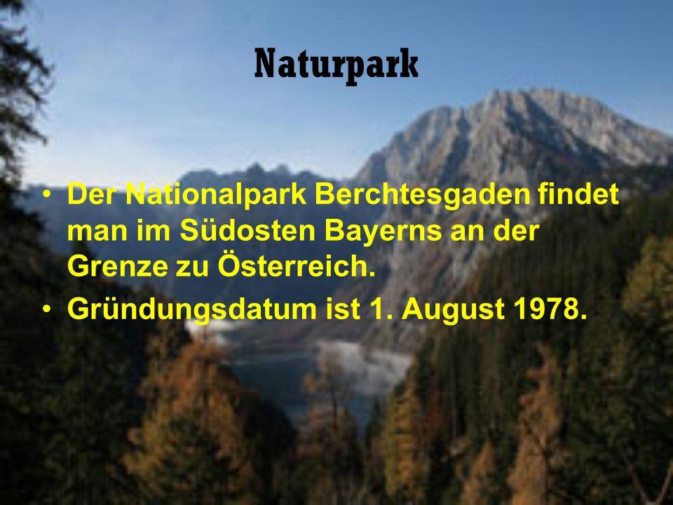 Naturpark Der Nationalpark Berchtesgaden findet man im Südosten Bayerns an der Grenze zu Österreich.