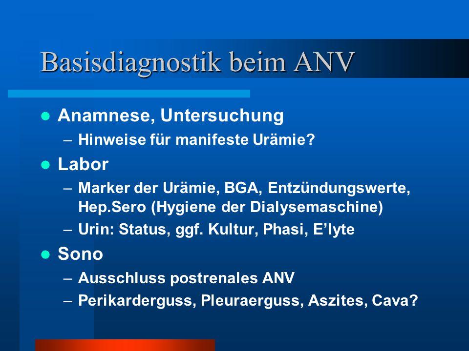 Basisdiagnostik beim ANV