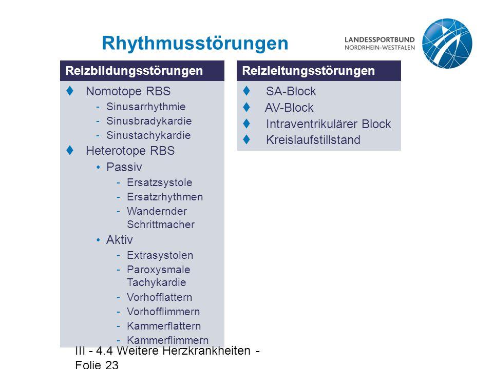 Rhythmusstörungen Reizbildungsstörungen Reizleitungsstörungen