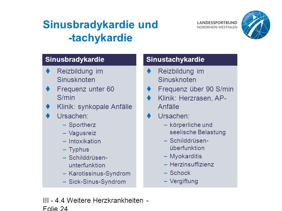 Sinusbradykardie und -tachykardie