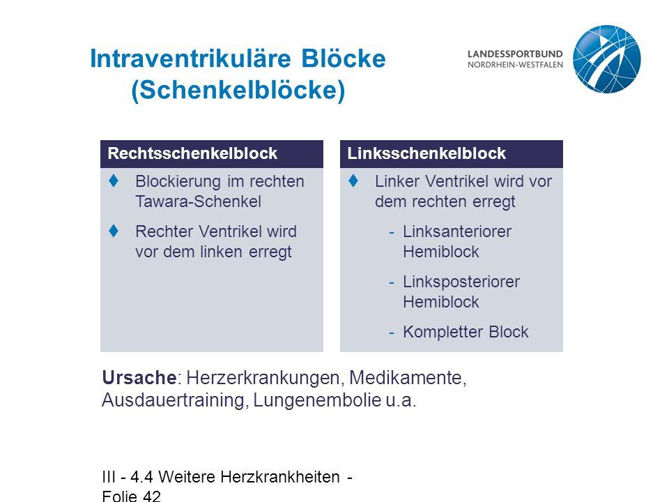 Intraventrikuläre Blöcke (Schenkelblöcke)
