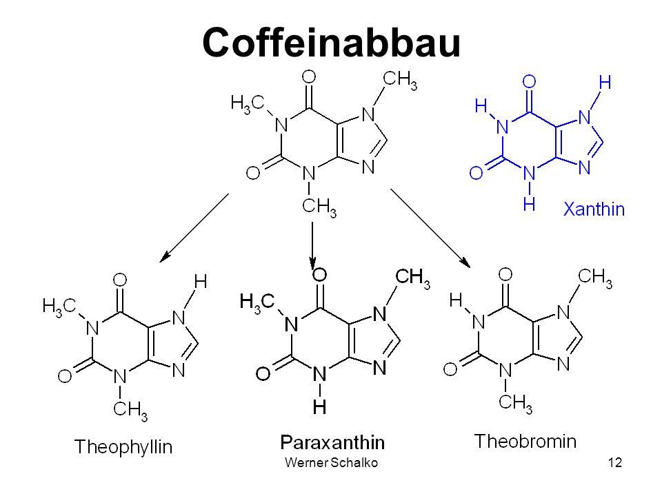 Coffeinabbau Werner Schalko