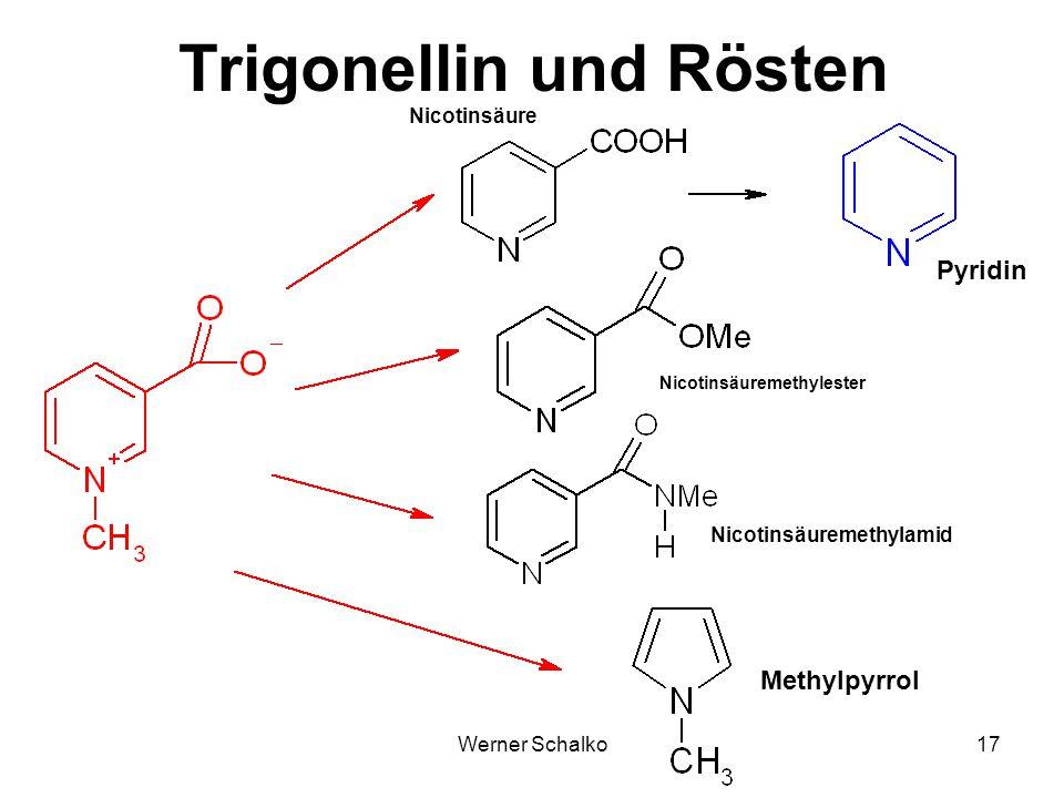 Trigonellin und Rösten