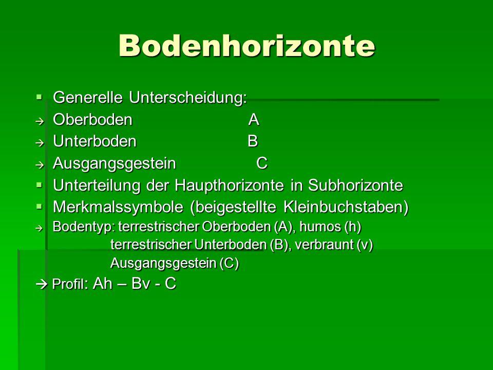 Bodenhorizonte Generelle Unterscheidung: Oberboden A Unterboden B