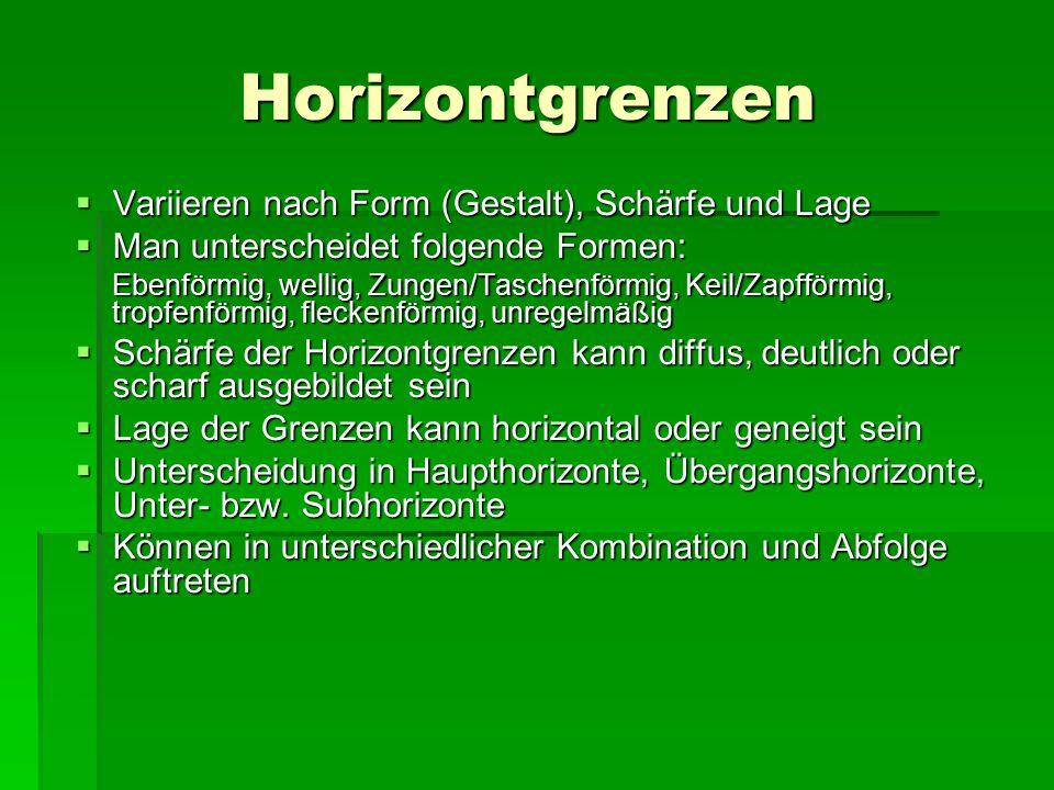 Horizontgrenzen Variieren nach Form (Gestalt), Schärfe und Lage